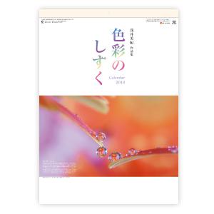 色彩のしずく  浅井美紀作品集