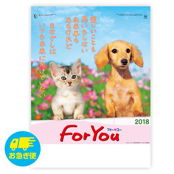 FOR YOU(フォー・ユー)