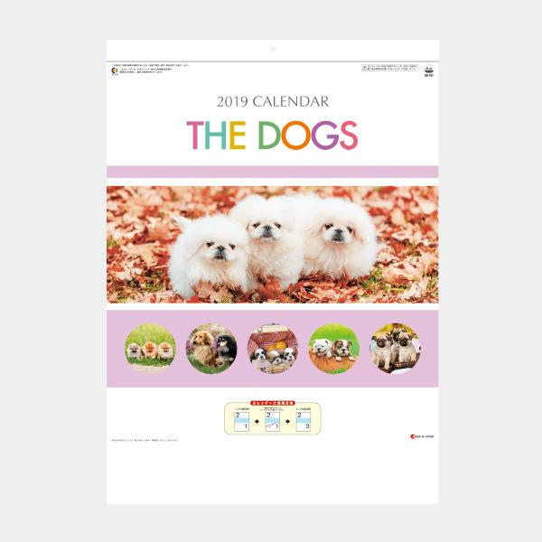 B4 THE DOGS〔ミシン目入〕