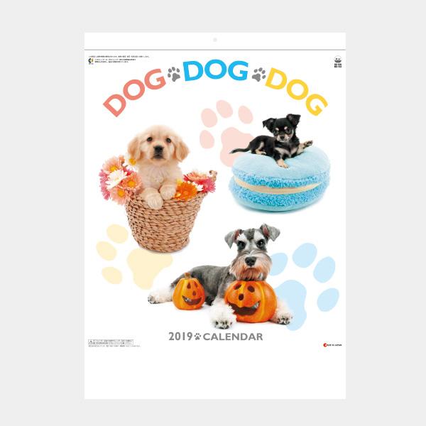 B4 DOG・DOG・DOG